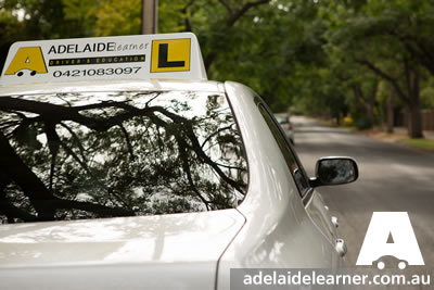 driving lessons system of car control